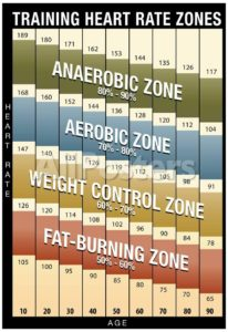 Heart Rate Zone Training: A Moving Target - Mental Muscle